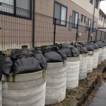 How radioactive soil collected is stored under the eaves of an apartment close to our   Project's office (black vinyl bags contained in sewage pipes).