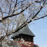 東京聖テモテ教会